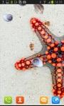 Awesome Sea Starfish Live Wallpaper screenshot 2/3