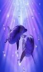 Blue Dolphin Live Wallpaper screenshot 1/3