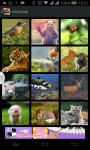 Best HD Wallpapers Collection screenshot 1/5