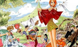 One Piece Wallpapers HD 2 screenshot 1/3