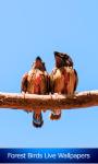 Forest Birds Live Wallpapers screenshot 1/6