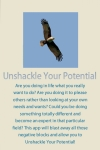 Unshackle Your Potential by David Samson screenshot 1/1