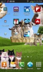 Cute Cats On Your Phone LWP FREE screenshot 2/5