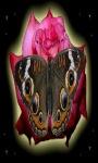 Pink Rose Butterfly LWP screenshot 3/3