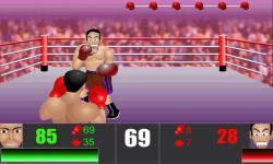 Furious Boxing screenshot 3/4