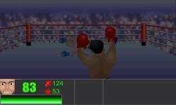 Furious Boxing screenshot 4/4
