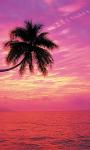 Beautiful Sunset Beach views Live Wallpaper screenshot 6/6