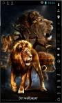 Amazing Lions Live Wallpaper screenshot 1/2