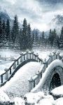 Winter Bridge Live wallpaper screenshot 1/3
