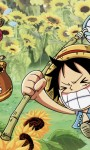 One Piece Anime The Movie HD Wallpaper screenshot 6/6