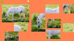Horse Puzzle For Kids screenshot 3/4