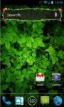 Search Widget Floral screenshot 1/4
