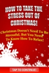 Take The Stress Out Of Christmas! screenshot 1/1