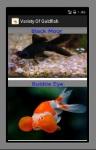 Variety Of Goldfish screenshot 2/3