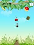 Ant Feeding  Free screenshot 3/6