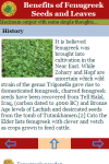 Benefits of Fenugreek Seeds and Leaves screenshot 3/3
