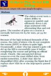 Rules to Play Down Hill Skiing screenshot 4/4