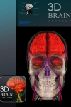 3D Brain ANATOMY screenshot 1/1
