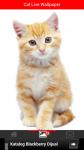 Free Cat Live Wallpaper screenshot 3/6