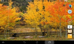 Fall Wallpaper Live screenshot 2/6