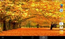 Fall Wallpaper Live screenshot 4/6