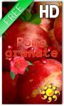 Fruit Pomegranate LWP screenshot 1/2