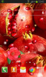 Fruit Pomegranate LWP screenshot 2/2