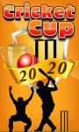 Cricket Cup 20-20 screenshot 1/1