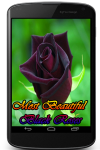 Most Beautiful Black Roses screenshot 1/3