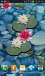 3D Koi Pond Live Wallpaper free screenshot 2/3