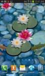 3D Koi Pond Live Wallpaper free screenshot 3/3