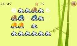 Pop The Panda screenshot 5/6