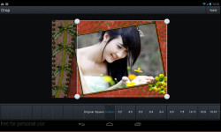 Spring Simple Frames screenshot 3/4