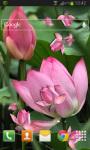 Lotus Live Wallpaper HD screenshot 2/2
