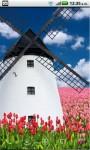 Ye olde windmill FREE screenshot 2/4