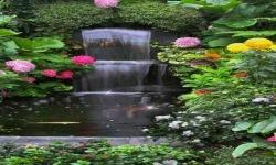 Garden Beauty Lwp screenshot 2/3