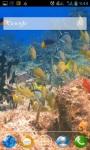 Colorful Fish screenshot 2/3