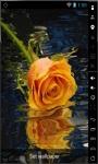 Beautiful Orange Rose Live Wallpaper screenshot 1/2
