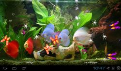 3D Discus Aquarium Live Wallpapers screenshot 1/4