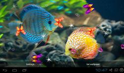 3D Discus Aquarium Live Wallpapers screenshot 2/4