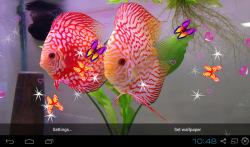 3D Discus Aquarium Live Wallpapers screenshot 3/4