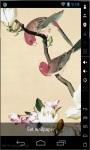 Parakeets HD Live Wallpaper screenshot 1/3