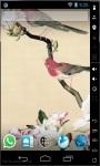 Parakeets HD Live Wallpaper screenshot 2/3