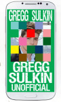 Gregg Sulkin Puzzle screenshot 4/6