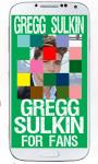 Gregg Sulkin Puzzle screenshot 6/6