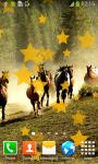 Top Horses Live Wallpapers screenshot 4/6