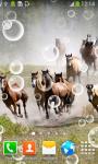 Top Horses Live Wallpapers screenshot 6/6