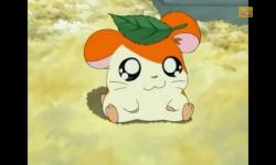 Hamtaro Video screenshot 5/6