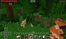 Minecraft 3D New Pocket Edition screenshot 4/6