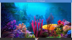Undersea World HD Wallpapers screenshot 1/6